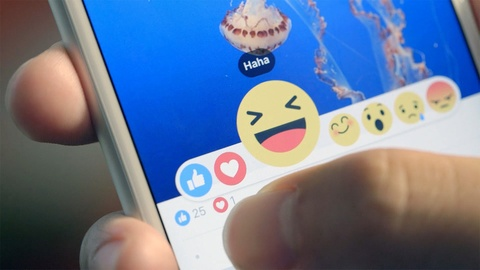 Hang chuc trieu status tren Facebook 'vo tinh' bi chuyen sang public hinh anh
