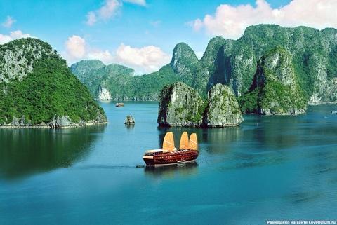 8 di san the gioi hut khach tai Viet Nam hinh anh 2