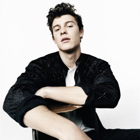 Ca si Shawn Mendes so huu hinh the sau mui khien fan nu tan chay hinh anh 6