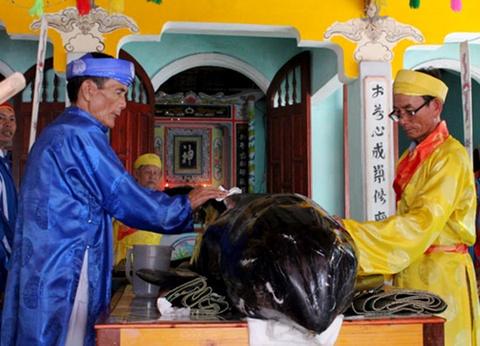 Ca 'Ong' hon 300 kg dat vao bo bien Quang Ngai hinh anh