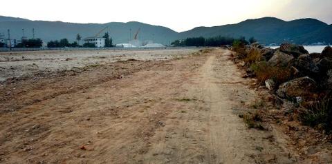 Khu lan bien 120.000 m2 hoang phi 6 nam ben bo bien Quy Nhon hinh anh 9