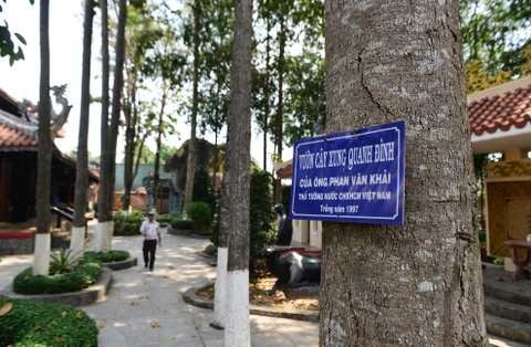 Dinh Tan Thong - noi ong Sau Khai thuong tra hinh anh 13