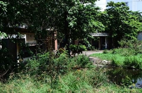 4 khu dat cong bo hoang tren doan duong hon 1 km o Sai Gon hinh anh 7