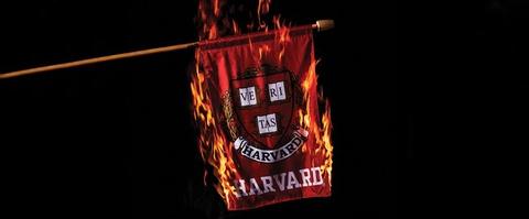 Ivy League: Thanh tri cua dac quyen va gia doi? hinh anh
