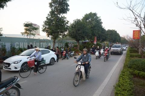 Cho Tet Ha Noi: Dao rung hut khach, mai vang diu hiu hinh anh