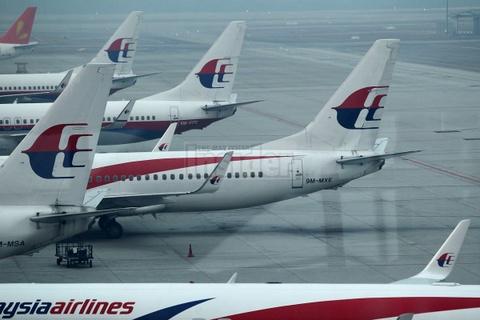 Tranh Ukraina, Malaysia Airlines chuyen huong bay sang Syria hinh anh