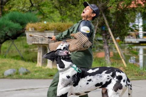 Cho khong lo trinh dien can xe bao ve chu nhan hinh anh