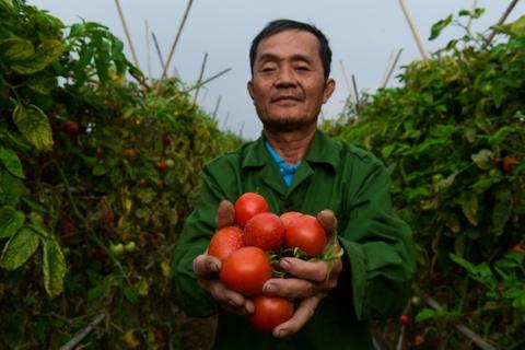 Nong dan Ha Noi: 'Chung toi cung can giai cuu' hinh anh