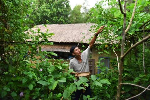 Chang nong dan 'khung' va giac mo ong hut tre hinh anh 4