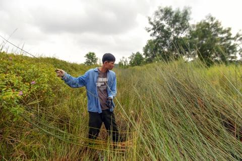 Chang nong dan 'khung' va giac mo ong hut tre hinh anh 20