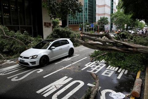 Bao Nida quet qua Hong Kong, hon 150 chuyen bay bi huy hinh anh
