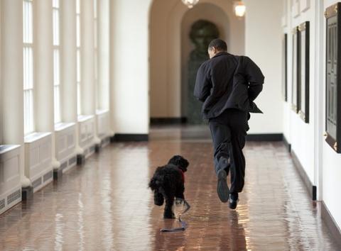 Tam biet Obama, the gioi se nho nhung hinh anh nay hinh anh 17
