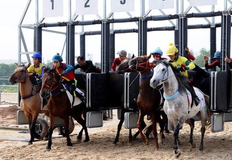 Đại gia Hàn đến Hà Nội xin đẩy nhanh dự án trường đua ngựa ở Sóc Sơn