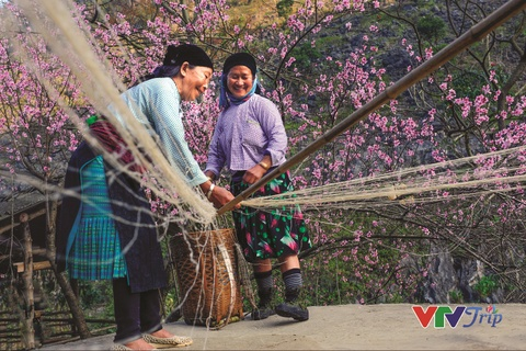 Viet Nam chuyen dong tren nhung nu cuoi lap lanh hinh anh 1