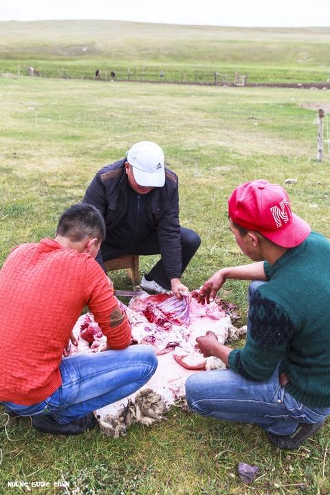 Cuoc song tren thao nguyen Tay A qua ong kinh phuot thu Viet hinh anh 7 Một số thanh niên trong gia đình sẽ tổ chức làm thịt cừu khi có lễ hội hoặc tụ họp các thành viên trong gia đình. Lông cừu sẽ được phơi khô và đem bán. Thịt cừu, xương cừu và tất cả bộ đồ lòng được họ ninh trong một cái chảo gang rất to cùng với một số gia vị và khoai tây. Món này thường được người Kyrgyz làm trong những ngày lễ truyền thống.