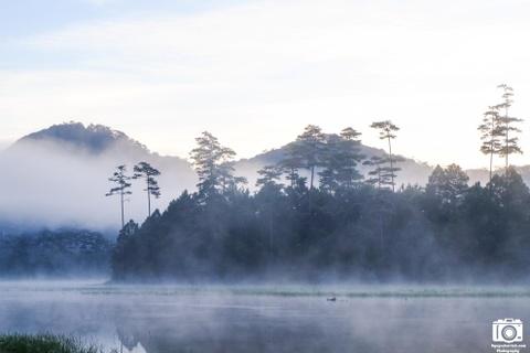 Ve me hoac cua ho Tuyen Lam sang som mua dong hinh anh 5 Mây, nước, rừng, núi như hòa quyện với nhau tạo nên một không gian vừa yên bình vừa thư thái.