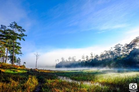 Ve me hoac cua ho Tuyen Lam sang som mua dong hinh anh 11 Đà Lạt quả không làm chúng tôi thất vọng, phong cảnh thiên nhiên quá đẹp.