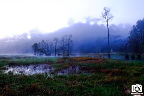 Ve me hoac cua ho Tuyen Lam sang som mua dong hinh anh 3 Buổi sáng phong cảnh tại đây như một bức tranh thủy mặc với sương bay là đà trên mặt hồ, phía xa là những rặng núi bị sương mù bao phủ.