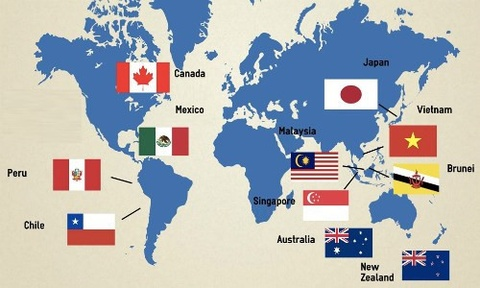 TPP-11: Hiep dinh lich su thay doi dien mao thuong mai toan cau hinh anh 3