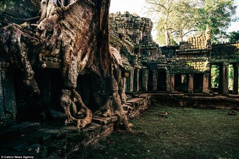Ve dep ky ao cua khu den phai den mot lan trong doi hinh anh 5 Đền Ta Prohm càng trở nên nổi tiếng hơn sau khi xuất hiện trong bộ phim Tomb Raider.