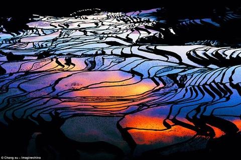 Canh dep than tien cua Trung Quoc tren bao Anh hinh anh 3 Những thửa ruộng bậc thang ở quận Yuanyang đầy nước từ tháng 12 đến tháng 4 hằng năm, trông như những mảnh gương soi. Khi mặt trời lặn, những gam màu phản chiếu trên mặt nước tạo một cảnh tượng đẹp siêu thực.