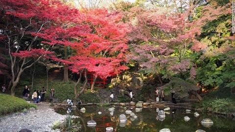 Nhung diem ngam canh mua thu dep nhat Tokyo hinh anh 4 Vườn Koishikawa Korakuen: Nằm kế khu giải trí phức hợp Tokyo Dome City, khu vườn này trổ bung màu đỏ và vàng rực của cây thích vào mùa thu.