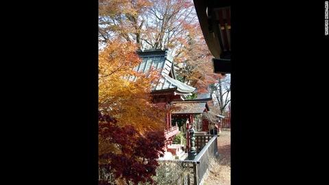 Nhung diem ngam canh mua thu dep nhat Tokyo hinh anh 6 Đền Musashi-Mitake: Du khách có thể đi cáp treo đến ngang chừng Mount Mitake rồi đi bộ 30 phút là tới đền Musashi-Mitake. Đây là nơi ngắm cảnh lý tưởng vào mùa thu.