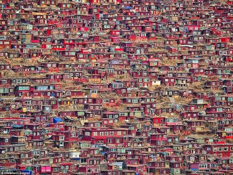 Canh dep than tien cua Trung Quoc tren bao Anh hinh anh 7 Ở giữa những quả đồi xanh mướt tại thung lũng Larung Gar là hàng nghìn ngôi nhà gỗ màu đỏ nằm kề sát bên nhau. Đây là học viện Phật giáo nổi tiếng Larung Gar lớn nhất thế giới.