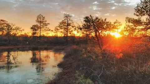 Nhung canh dep khong can chinh sua tren Instagram hinh anh 9 Phong cảnh thiên nhiên ở Estonia tràn ngập trên Instagram mà không cần hiệu ứng hình ảnh.