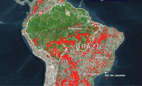 Brazil trien khai quan doi ung pho tham hoa chay rung Amazon hinh anh