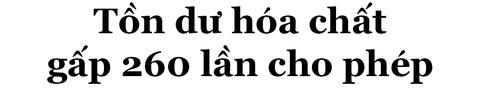 Ky uc - noi niem sau 'tham hoa' chay than lam 8 nguoi chet hinh anh 10
