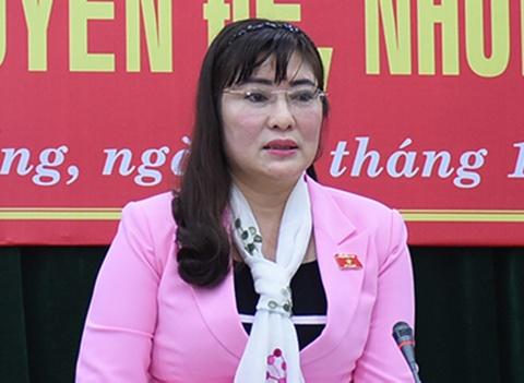 Chinh quyen Da Nang lam sai, doanh nghiep doa khoi kien hinh anh
