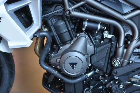 Can canh Triumph Tiger 800 2019 - doi trong cua BMW F800 GS hinh anh 9