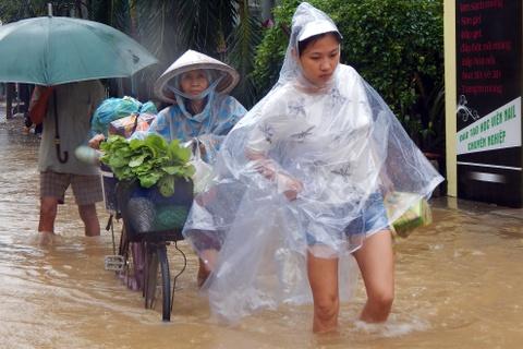 Thuy dien tiep tuc xa lu, Quang Nam ngap sau hinh anh 3