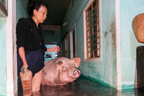 Nguoi dan Quang Nam thuc xuyen dem dua vat dung den noi kho rao hinh anh
