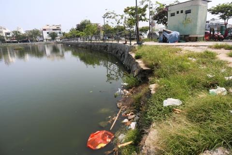 Nhech nhac quanh 'la phoi xanh' giua long Da Nang hinh anh 8