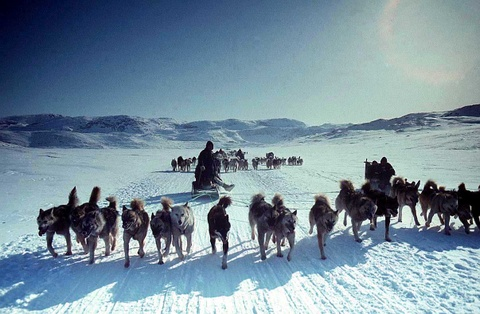 Cuoc song o noi vung cuc cua nguoi Eskimo hinh anh 8