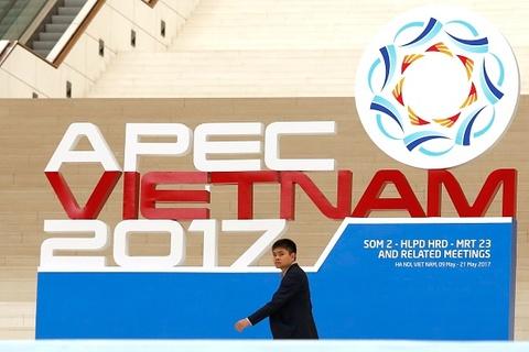 Ban biet gi ve APEC va 2 lan dang cai cua Viet Nam? hinh anh