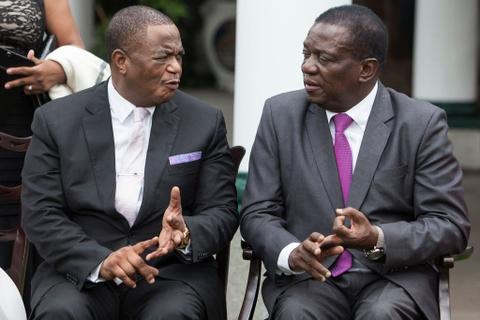 Song ngam quyen luc phia sau tong thong 'Ca sau' cua Zimbabwe hinh anh 8