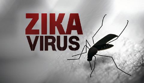 Bo truong Y te chu tri cuoc hop khan ve virus Zika hinh anh