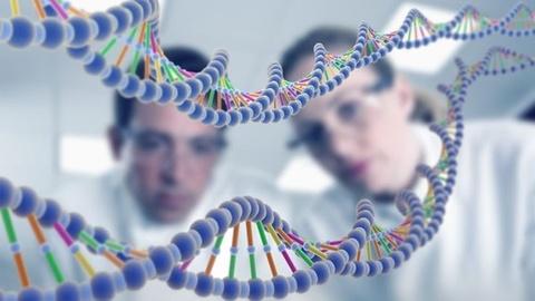 Con trai bien thanh con gai sau khi xet nghiem ADN hinh anh