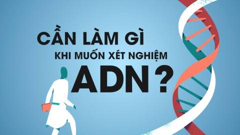Can lam gi khi muon xet nghiem ADN? hinh anh
