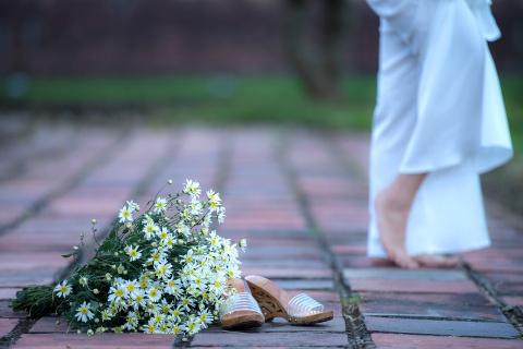 Cuc hoa mi no ro tu vuon ra pho hinh anh