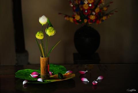 Lang hoa giay 400 tuoi o Hue don Tet hinh anh 13