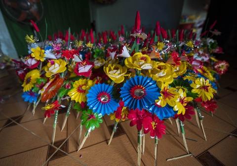 Lang hoa giay 400 tuoi o Hue don Tet hinh anh 6