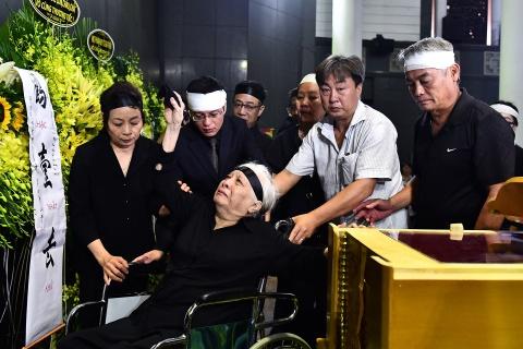 Lanh dao Dang, Nha nuoc va ban be tien biet giao su Phan Huy Le hinh anh 19