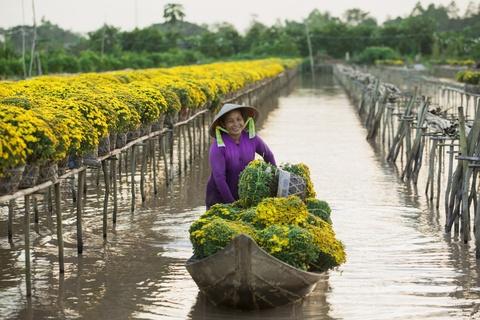 'Vuong quoc hoa' mien Tay nhung ngay giap Tet hinh anh 7