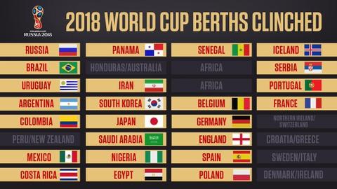 Xac dinh xong 5 doi tuyen chau Phi du World Cup 2018 hinh anh 10