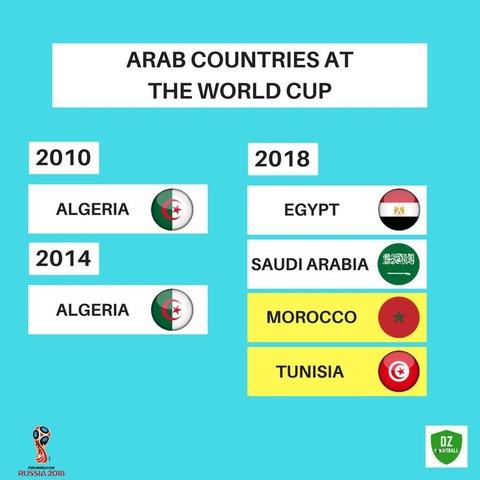 Xac dinh xong 5 doi tuyen chau Phi du World Cup 2018 hinh anh 8