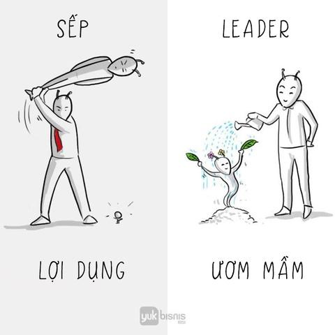 'Sep' va 'leader': Tuong khong khac ma khac khong tuong hinh anh 6
